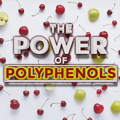 Power of Polyphenols