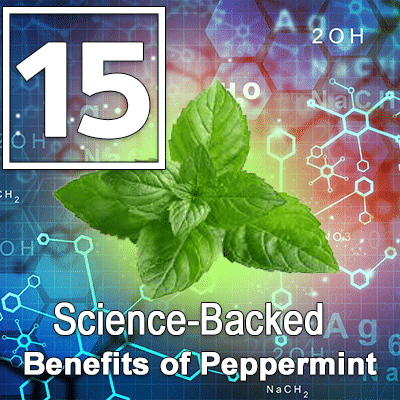 15 Science-Backed Benefits of Peppermint