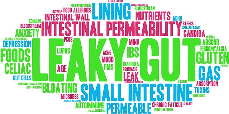 Leaky gut symptoms