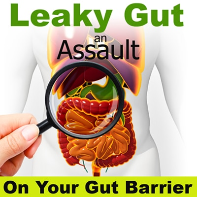 Leaky Gut: An Assault On Your Gut Barrier