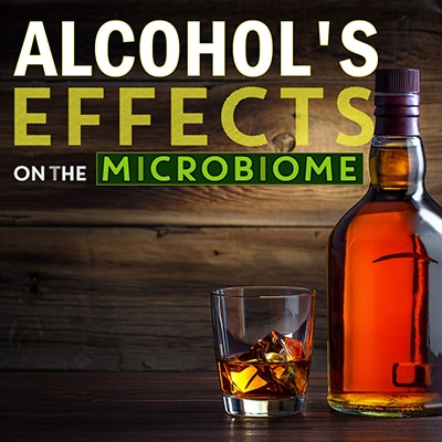 Alcohol's Effects on the Microbiome
