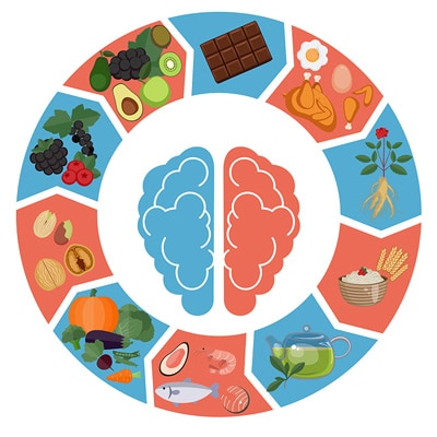 brain and fasting