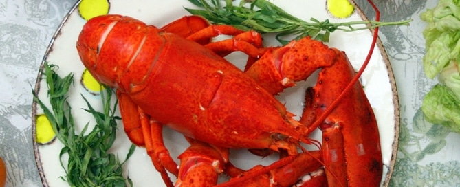 Large Lobster On A Plate
