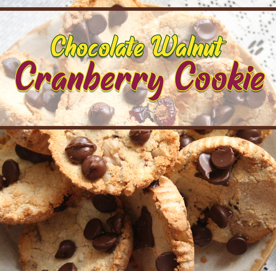 Holiday Chocolate Walnut Cranberry Cookies