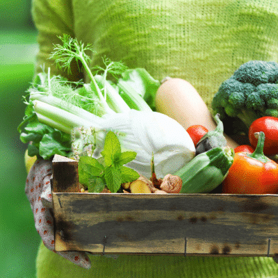 Garden Your Way to a Better Gut: The Best Plants to Promote Gut Health