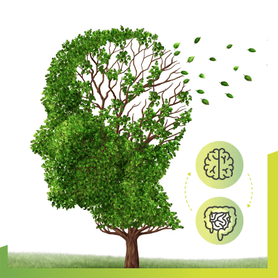 A tree with Alzheimers